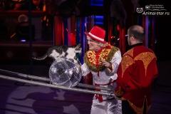 100 лет цирку