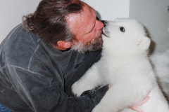 1347557979_polar-bear15
