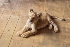 Король лев. Львенок Нала - 8