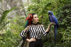 Майя Артемьева и её попугаи