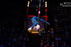 Открытая репетция в цирке