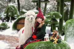 Парк Сказка, фотосессия с альпакой