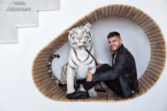 Ростислав Гаврылив и его кошки